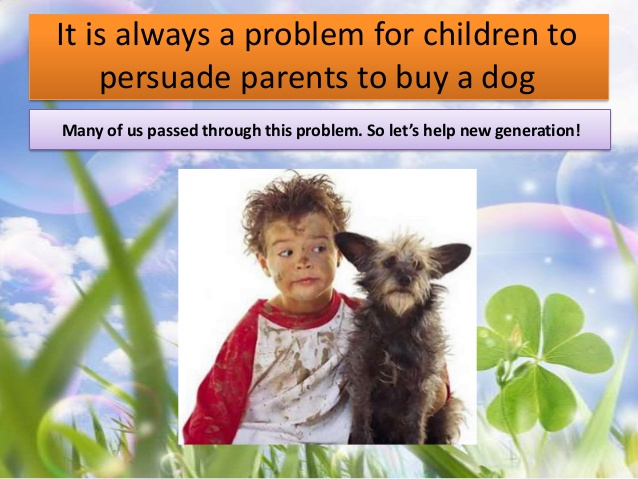 how-to-persuade-parents-to-buy-a-dog-2-638.jpg